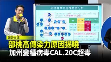 部桃高傳染力原因揭曉 加州變種病毒CAL.20C...