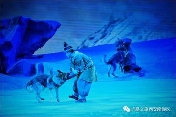 狼真的來了!中國表演拚噱頭 出動十幾匹狼