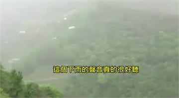 德基山區降雨半小時 民眾直呼:下雨聲音真好聽