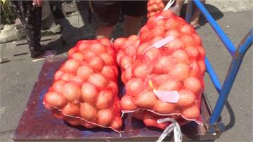真的有「洋蔥」!乾旱洋蔥染蟲害 里長暖心買千包送...
