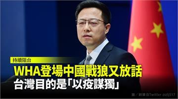 WHA登場趙立堅又放話 台灣目的是「以疫謀獨」