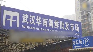 武漢不明肺炎44例、香港再爆6例 我國急訂SOP