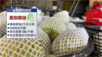 中國暫停進口台灣釋迦 農民:不如統一收購