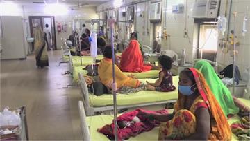 新冠疫情燒不完 印度又爆發登革熱釀114人亡