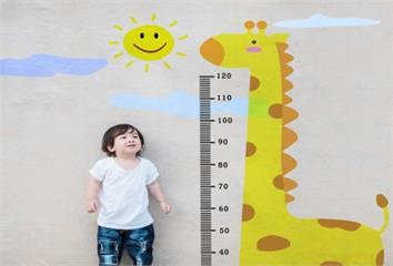 孩子長不高跟太胖有關?長高、轉骨知識一次搞懂