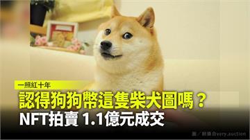 著名柴犬迷因NFT拍賣 1.1億元成交