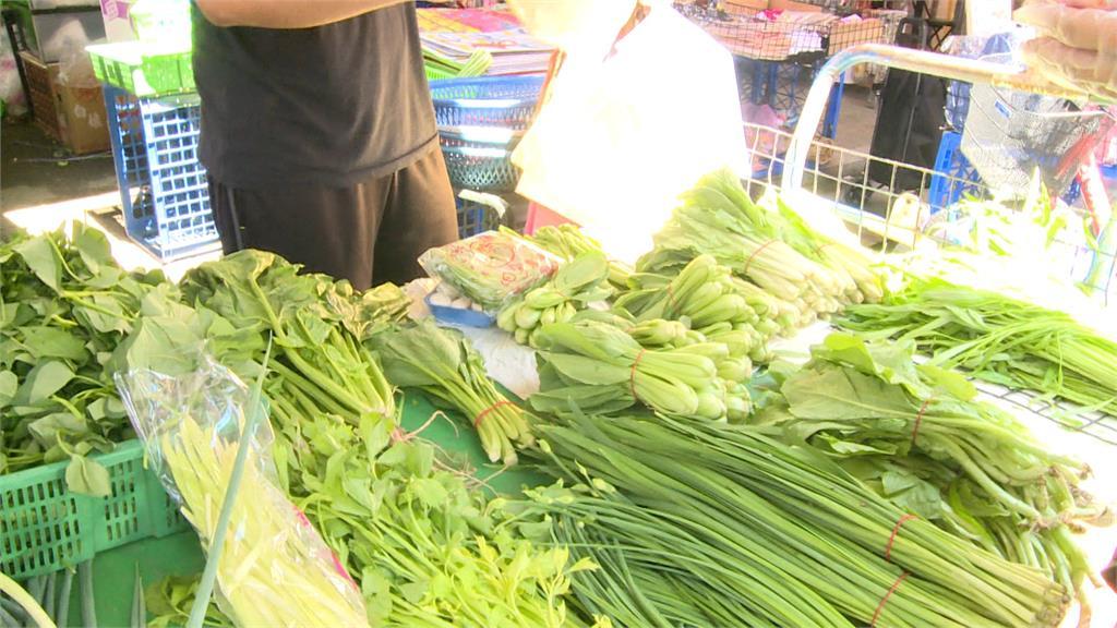 近期菜價飆漲。圖/台視新聞