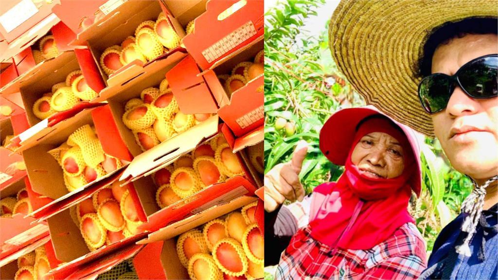 桑布伊直播幫母親賣芒果,2小時300箱「完售」。圖/翻攝自桑布伊臉書