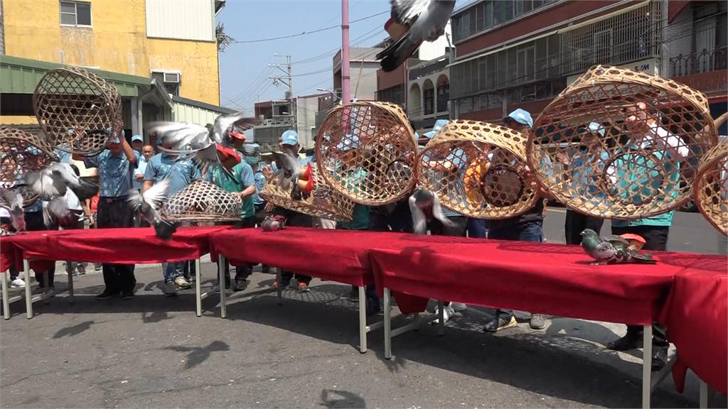 傳統農村活動恐失傳 「賽鴿笭」嘉義登場