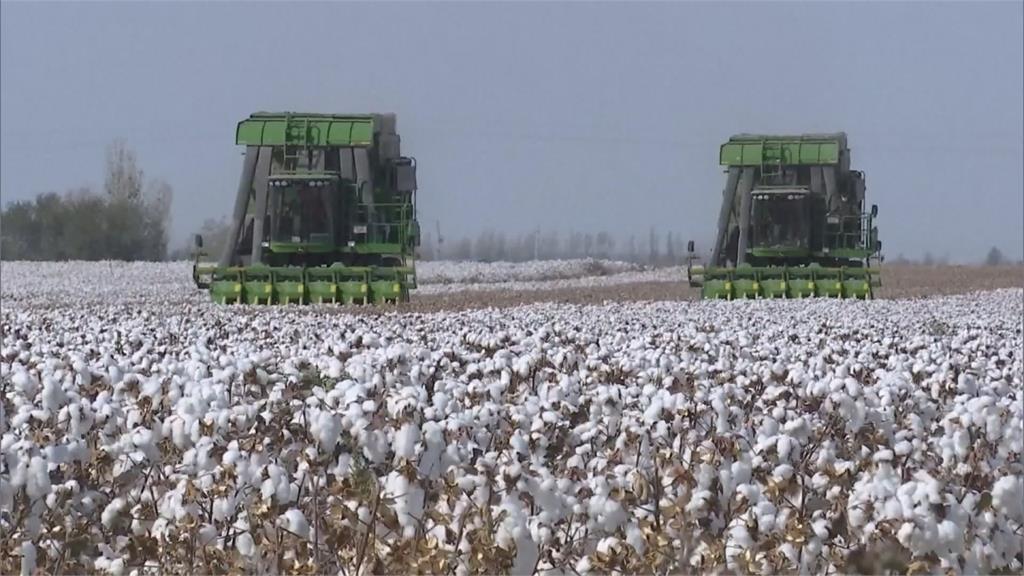 新疆棉爭議中西對抗 跨國品牌抵制續延燒