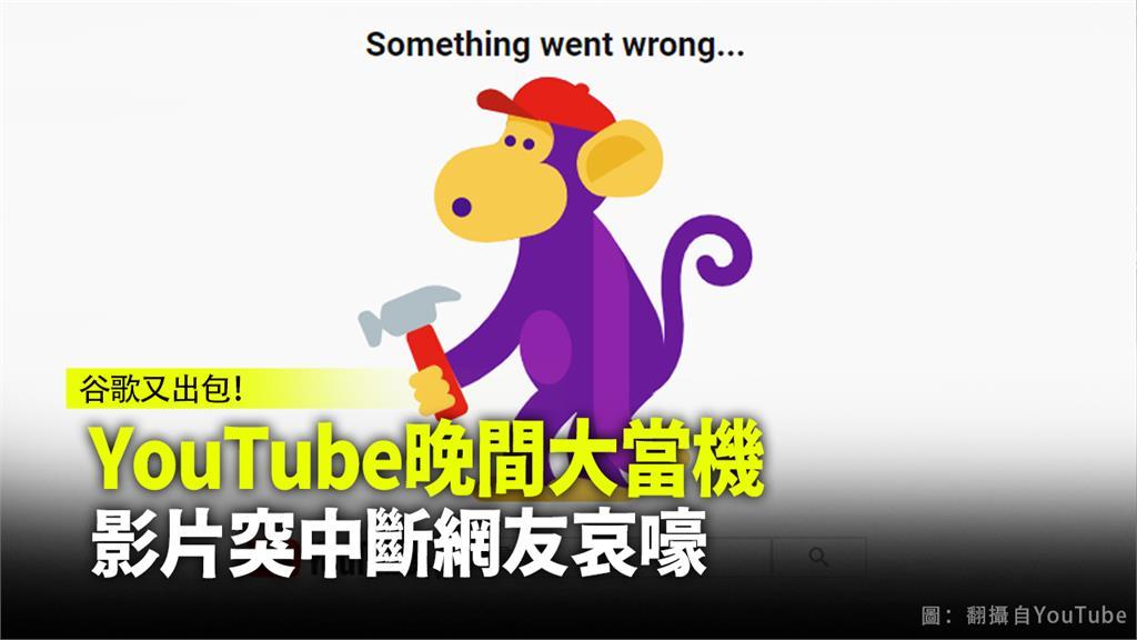 YouTube今晚突然當機斷訊,網友笑稱現在全世界都在看YouTube「那隻猴子」。圖:翻攝自YouTube